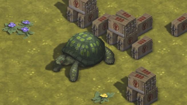 Tortoise Ammo 2