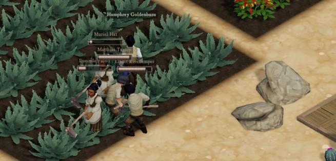 desert_crops